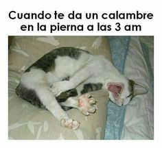 #gracioso #humores