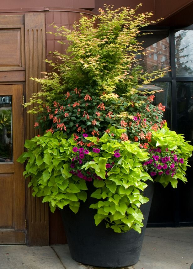Summer Beautification Commercial Planters Hole S
