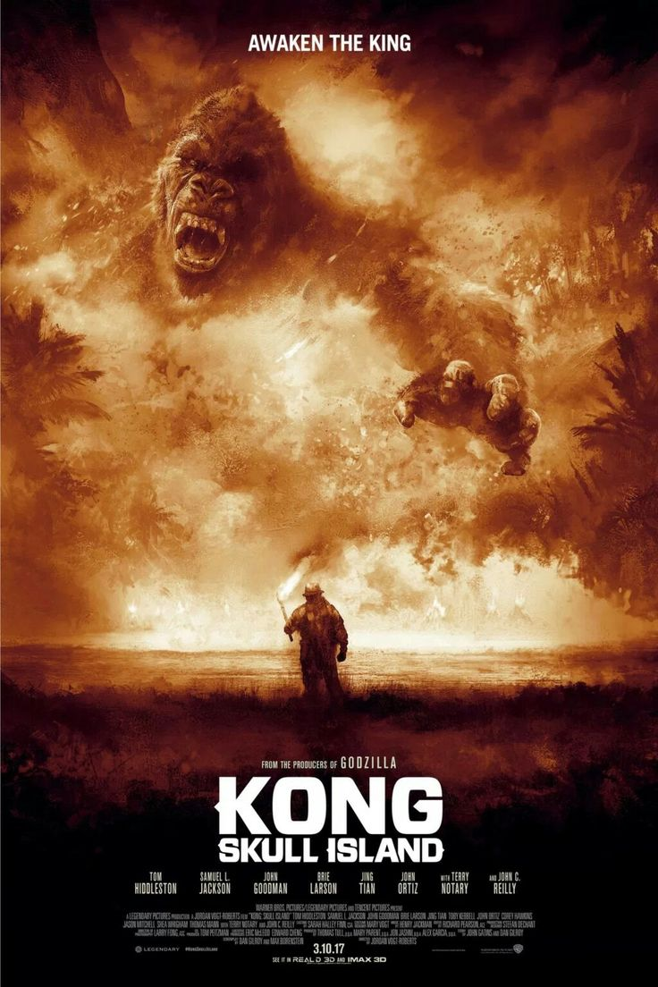 I don't understand why lately they are making so many remakes of the King Kong- still I want to watch it!