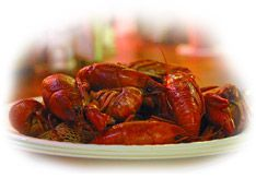 Find live and boiled crawfish prices in your area Crawfish Pricelist