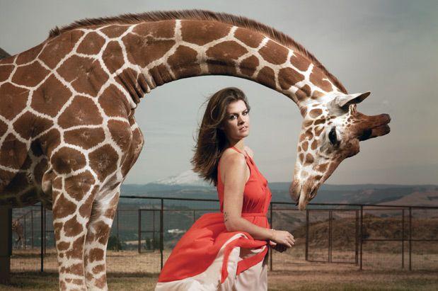 Seattle artist Stacey Rozich - a 2012 Seattle magazine spotlight award winner: Animal Instinct, Rozich Animal, Seattle Magazine