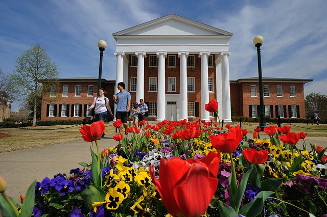There's nothing quite like the Ole Miss campus in springtime!