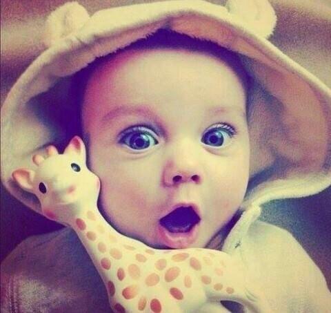 Sophie the giraffe!