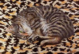 Tabby Cat  by simon-knott-fine-artist at zippi.co.uk
