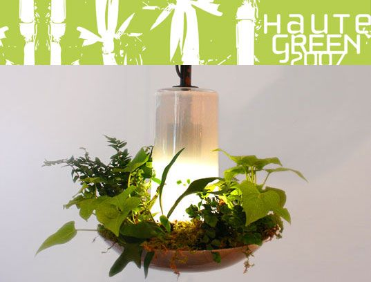 LUZ VERDE: Lámpara Botánico, terrario, filtro de aire All-In-One | Inhabitat - Diseño Sostenible Innovación, Eco Arquitectura, Construcción Verde