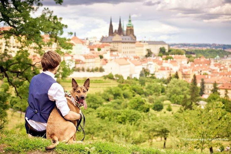 Ženich se svým pejskem   Groom with his dog