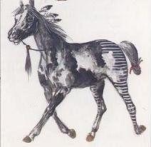 """. Cheval de type """"Pinto"""" , sans race précise mais très apprécié des Indiens qui peignaient parfois un cheval blanc en """"Pinto"""".  Parfois, le cheval était entièrement peint.  On vit ainsi un guerrier et sa monture peints totalement en bleu à pois blancs ! Les stries horizontales sur l'arrière train sont, ici aussi, révélatrices de l'appartenance à une secte quelconque.( à une élite guerrière: skyrock)"""