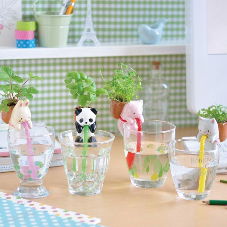 Unsere Chuppon Tierischen Kräutertöpfe mit Selbstbewässerung - Schweinchen, Kätzchen, Panda(chen) und Häschen zur dekorativen Pflanzenaufzucht in deiner Küche.