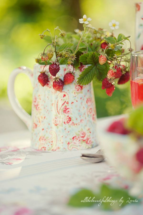strawberies: Summer Strawberries, Sweet, Style, Pitcher, Cath Kidston, Wild Strawberries, Garden