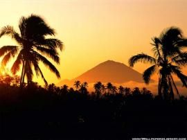 Tropical Mountain Wallpaper