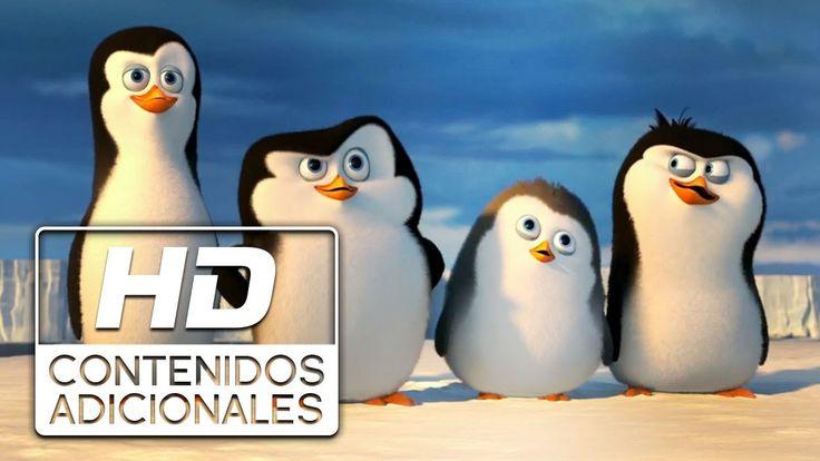 Trailer en espanol para la pelicula, Los Pinguinos de Madagascar