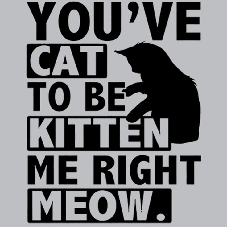 You ve Cat to be Kitten Me Right Meow T-Shirt Cats say the most outrageous things! It helps to have to proper vocabulary to express your disbelief. This tee should do the trick! More Info Behind You v