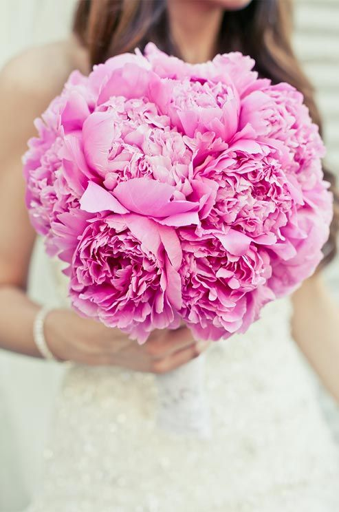 A traditional bouquet gets a bold touch when a classic nosegay is formed out of bright pink peonies.