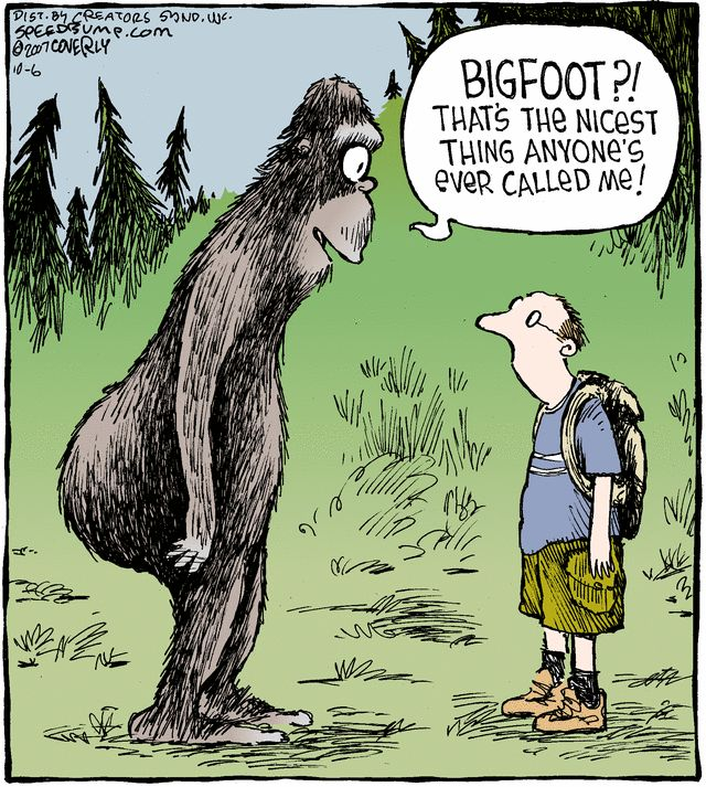 16 best Bigfoot Cartoons images on Pinterest | Comic books ...Bigfoot Comic