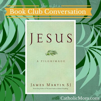 "We are breaking open a book club conversation on ""Jesus: A Pilgrimage"" by James Martin, SJ http://catholicmom.com/2014/05/18/introduction-who-is-jesus-jesus-a-pilgrimage/ - this will be a long-term look at a very important book. You're invited!!"