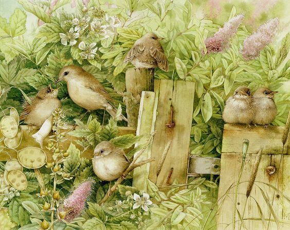 - Lovely Bird Illustrations by Marjolein Bastin  <3 <3