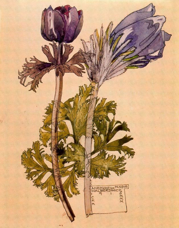 .:. Anemone and Pasque, Walberswick, by Charles Rennie Mackintosh and Margaret Macdonald Mackintosh, 1915. Watercolour and pencil http://xaxor.com/oil-paintings/665-charles-rennie-mackintosh.html