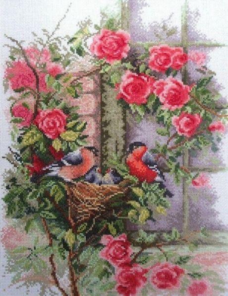 Pinzones y rosas.