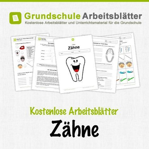 31 best Sachkunde images on Pinterest | Elementary schools ...