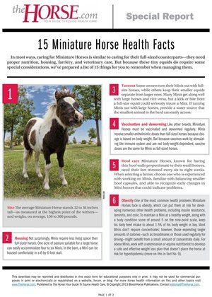 Minis are a lot like big horses, but different too. Here, learn how to best care for pint-sized equids.