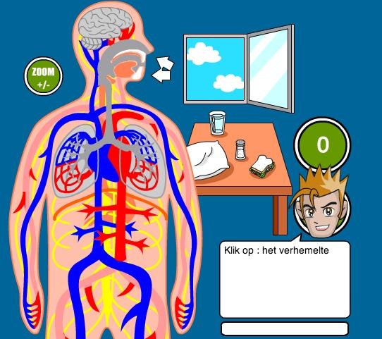 Link naar online spel over bloed en zuurstoftransport.