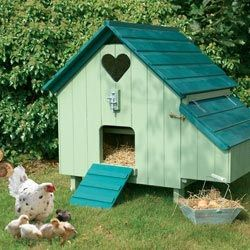 Hen House, only thing is that the heart at the top had better have hardware clothe over it or the critters will help themselves to the chicks and likely the chicken too.