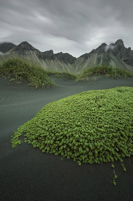 (Green Island) Iceland by Raymo Photography