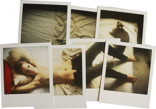 pieced together polaroids.