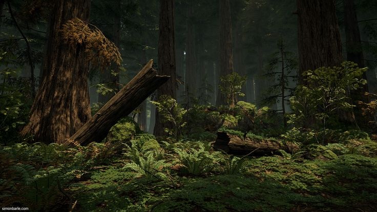 Redwood Forest UE4 - Polycount Forum