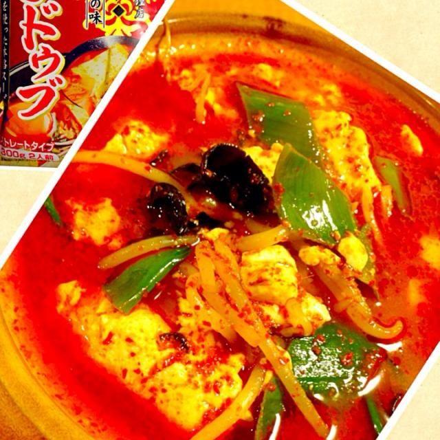 銀座の高級韓国料理店との事です。 デフォでは全く辛くないので銀時オリジナル一味を大量投入。 具は甘くなるので卵、肉は敢えて入れずネギ、もやし、キクラゲのみ。 かなりヘルシーなスンドゥブになりました。 地味に汗がいっぱい出た。^_^ - 214件のもぐもぐ - 激辛スンドゥブ by lemonpai2001