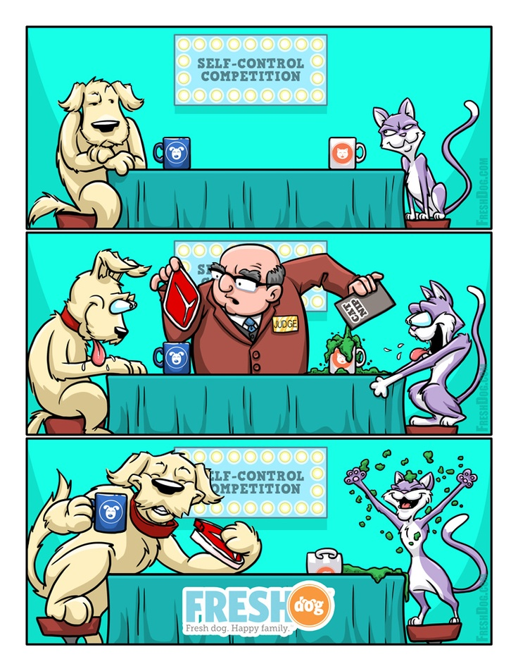 Cat And Dog Tundra Comic