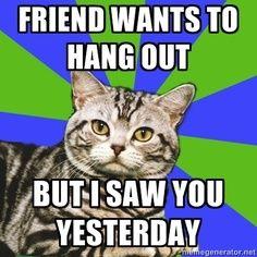 Hahahahhahaa... Oh I need to show this to Rachael...