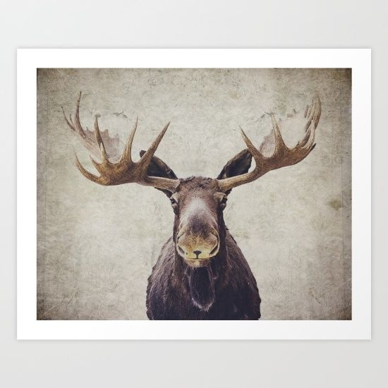 Buy Moose Art Print by Retro Love Photography. Worldwide shipping available at Society6.com. Just one of millions of high quality products available.