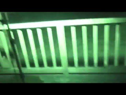 Ufo Evidence: Invasão Alienígena de Domicílio