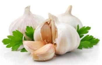 Planting Garlic - Fall is the best time to do it. -