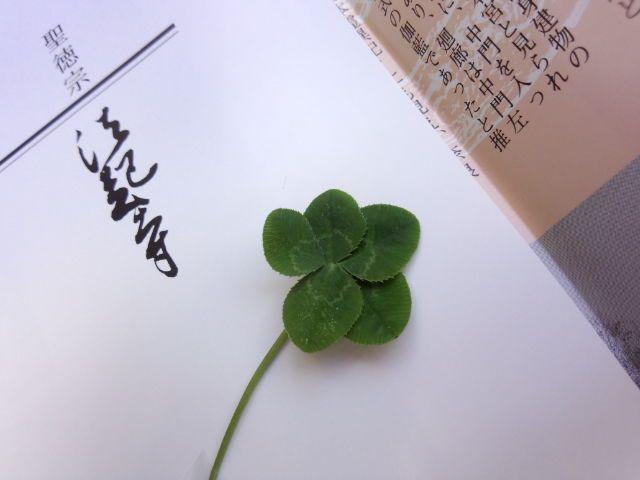お寺のおじいちゃんが五つ葉のクローバーくれた。