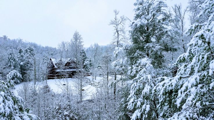 #Bluemountainlodge #vacationrental #cabin from across the street
