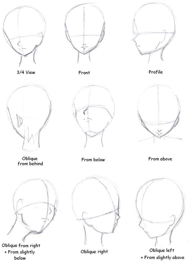 f19d746cc32afa7aea69b4ccfb5f00cf manga drawing drawing tips 11 best images about bodybuilding on pinterest may 1, steve,Galls Siren Speaker Wiring Diagram