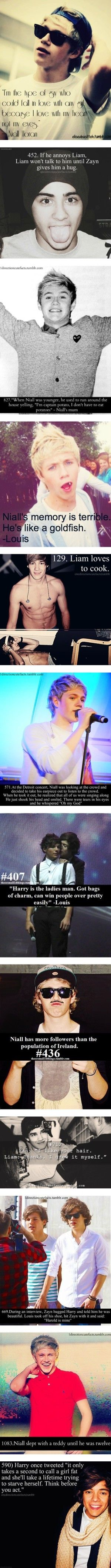 1D facts:) I LOVE the one about Niall taking out his ear piece. And when Niall's mum said that!!!! Hahaha i can TOTALLY imagine it!!! (Yes, Im american, but it didn't feel right using an irish name like Niall and then saying mom right after. You've gotta say mum)