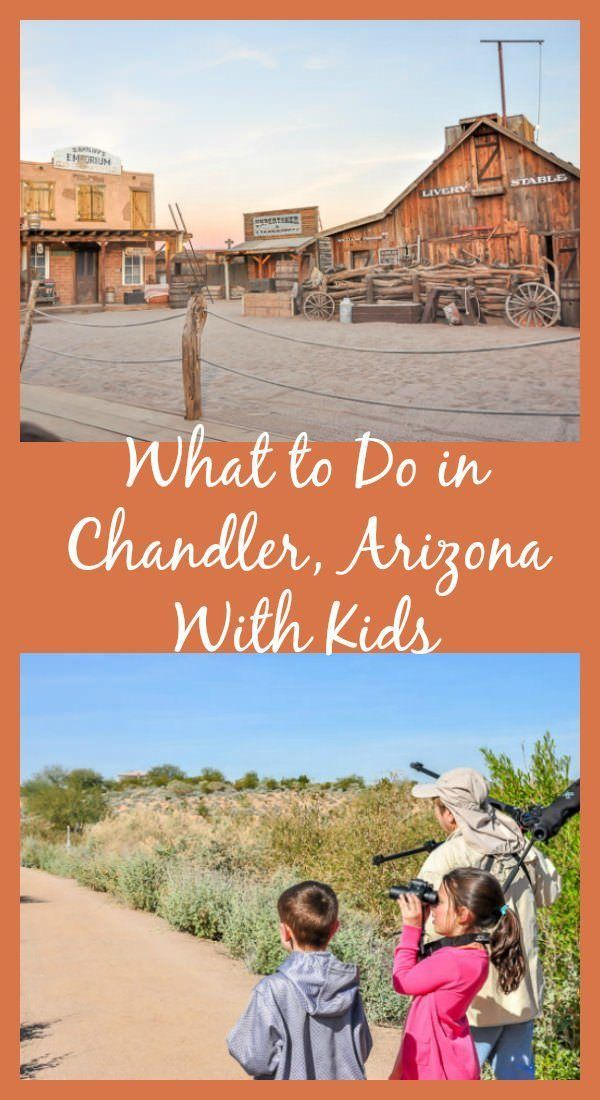 What to do in Chandler, Arizona with kids, including bird watching.