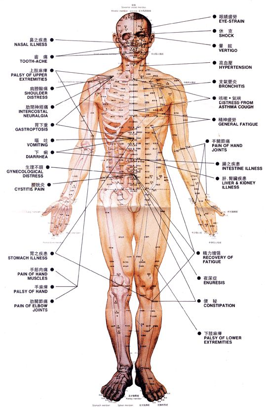 Full Body Acupuncture Ancient Chinese