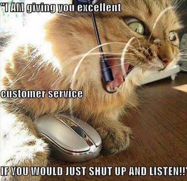 Best 25+ Customer service funny ideas on Pinterest Customer - define excellent customer service