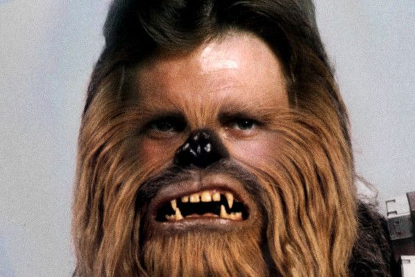 Which Two 'Star Wars' Characters Are You? - Maybe you're a Han Vader or maybe you're a Yobacca! - Quiz