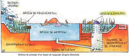 Not in English - natural pool design - Piscine naturelle