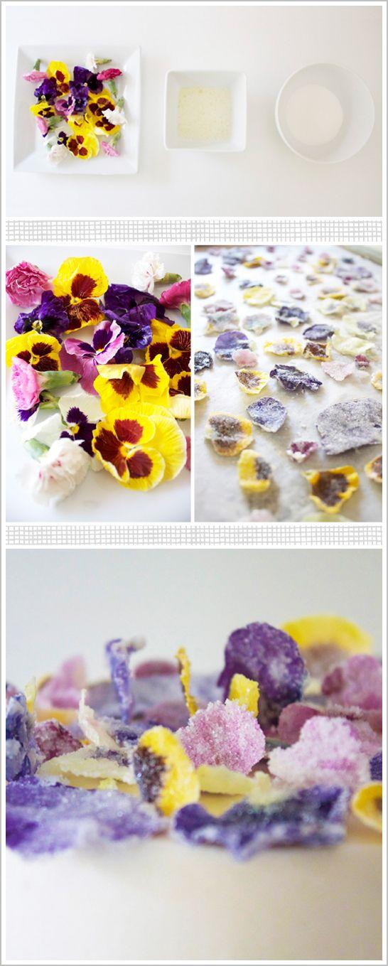 DIY: Brillantes Flores del azúcar recubiertos  Pétalos de flores cristalizadas un tutorial de Miso Bakes