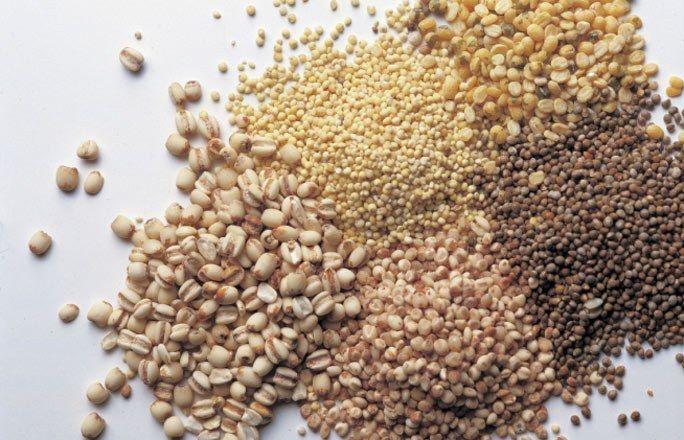 Ballaststoffreiche Lebensmittel