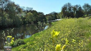 BOGAJO Salamanca: Paisajes de primavera 2013 en Bogajo