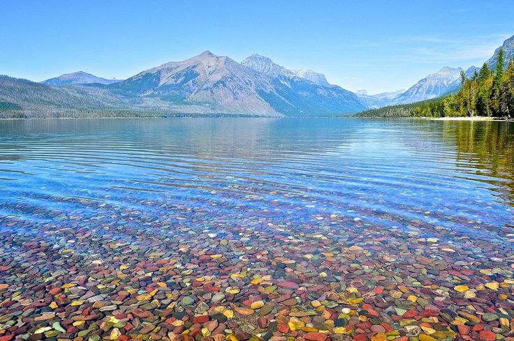 Pebble shore lake. Lake McDonald is the largest of the lakes of Glacier National Park with a surface area of 6,823 acres. It is also the longest, at over 15 km, as well as the deepest lake at 141 meters.