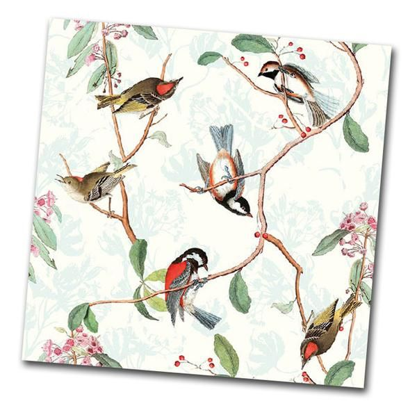 """Beautiful napkins covered with natures most gifted song birds! Printed on uxury paper napkins. Package of 20 Napkins 6.5"""" x 6.5"""" folded Luxury 3-Ply soft paper"""