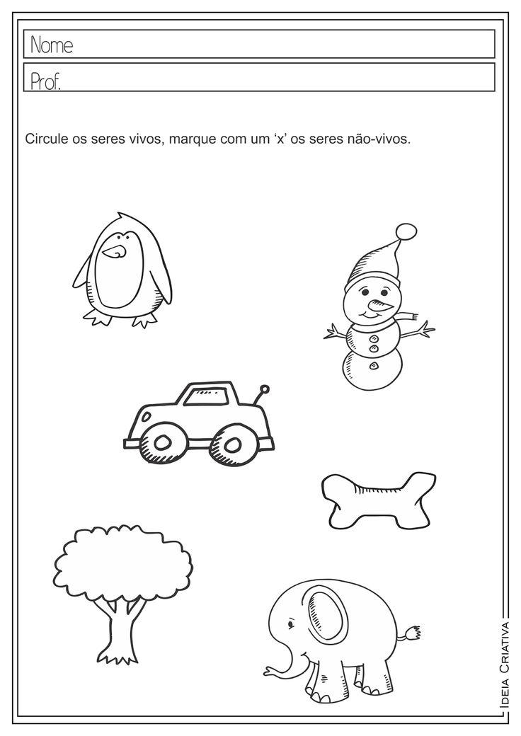 atividades-educativas-seres-vivos-mamiferos-ciencias-2-ano-ideia-criativa-ensino-fundamental+(1).png (1132×1600)